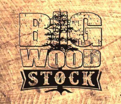 Big Wood Stock