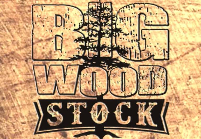 Big Wood Stock