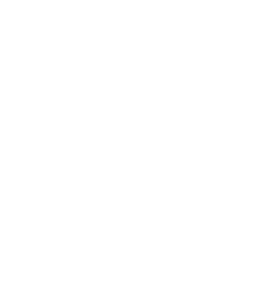 Big Wood Stock logo