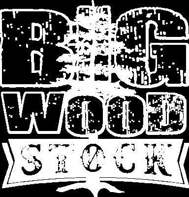 Big Wood Stock logo